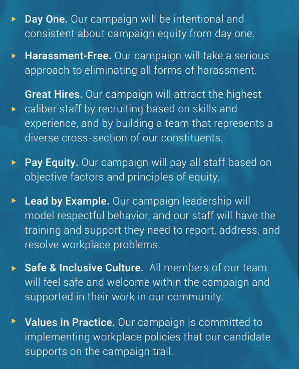 Working IDEAL Campaign Equity Toolkit checklist excerpt