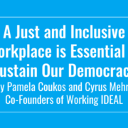 Cyrus Mehri Pam Coukos Working IDEAL on democracy and inclusivity